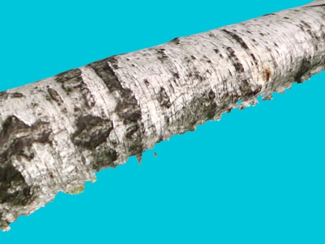 birch bark - 3ds