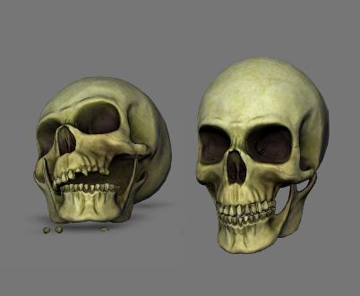 obj cranium skull