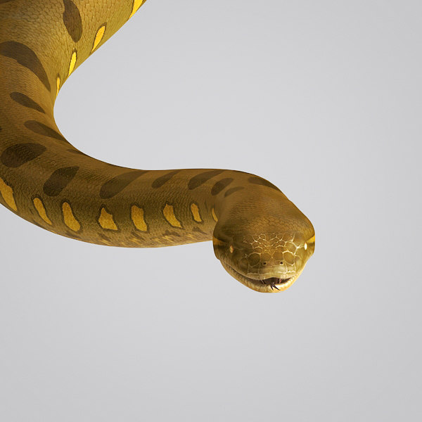 3ds max anaconda snake