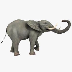 elephant rigged 3d fbx