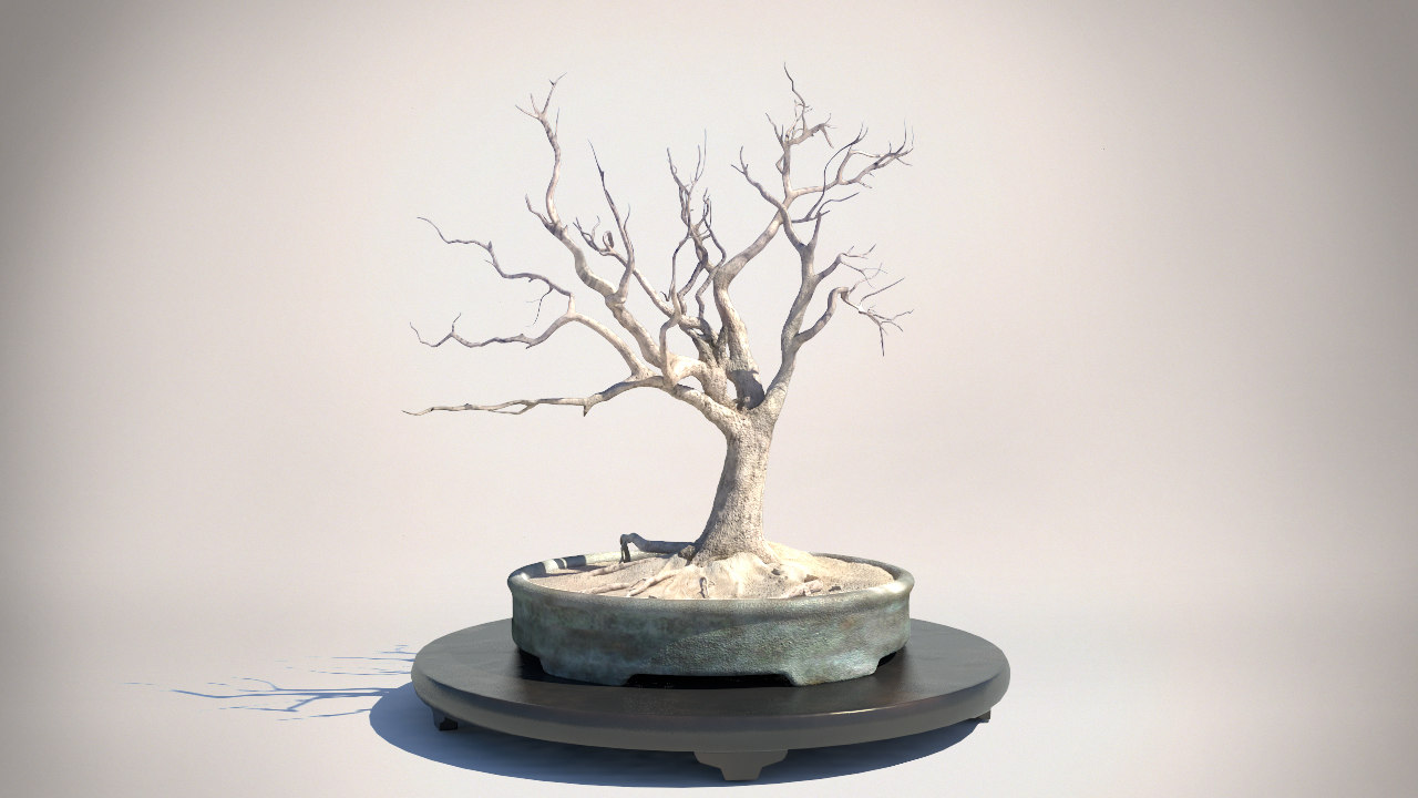 3ds max desert tree camel thorn