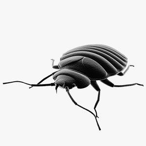 bed bug pest 3ds