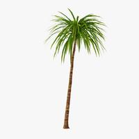 3d model palm 011