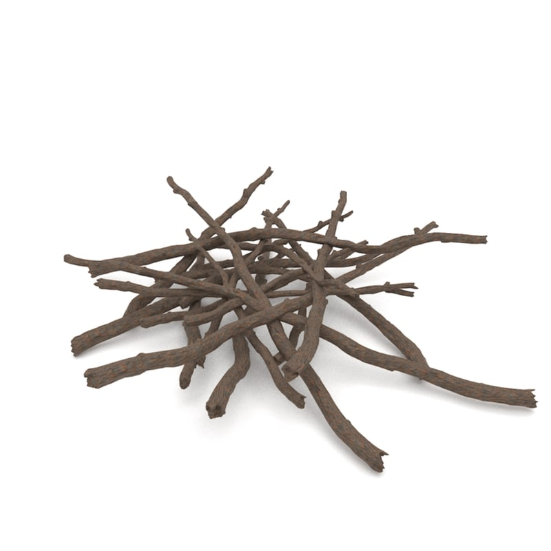 3d model of twigs 1