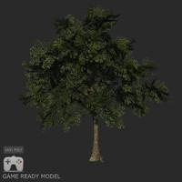 Low poly tree 02