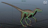 3d velociraptor rig skeleton