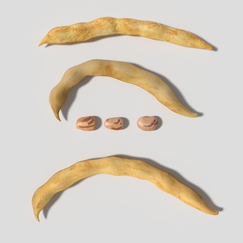 dried beans 3d model