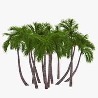 3d model palm 018