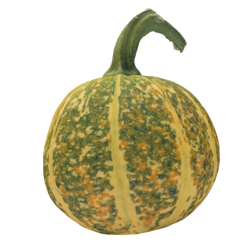 pumpkin 3d obj
