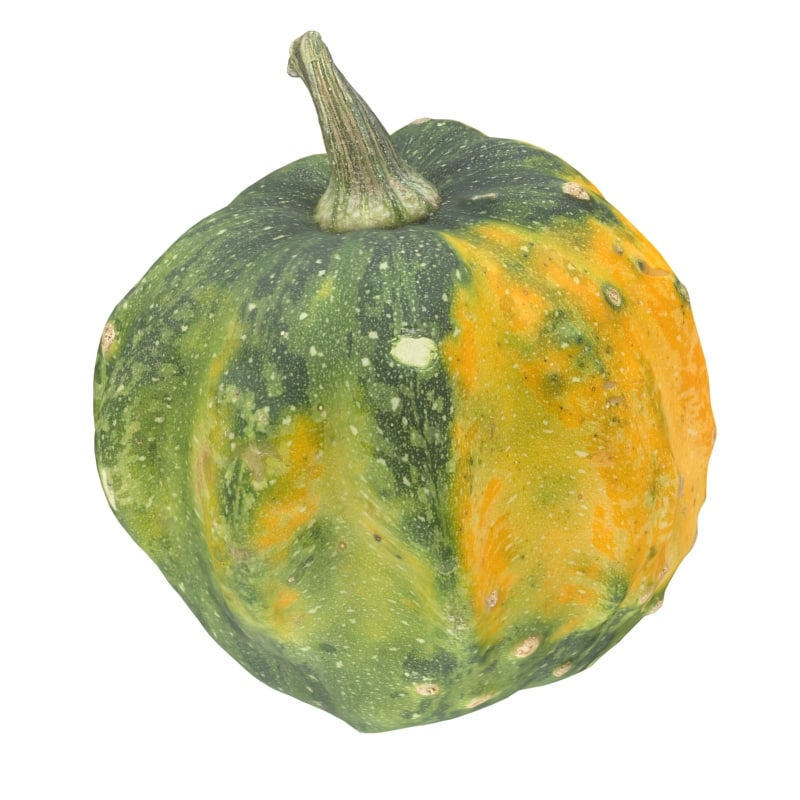 pumpkin scan 3d obj