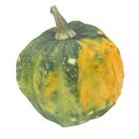 pumpkin scan 3d obj