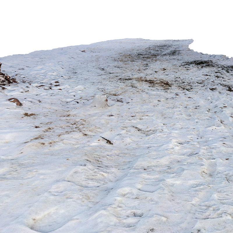 maya scan snow