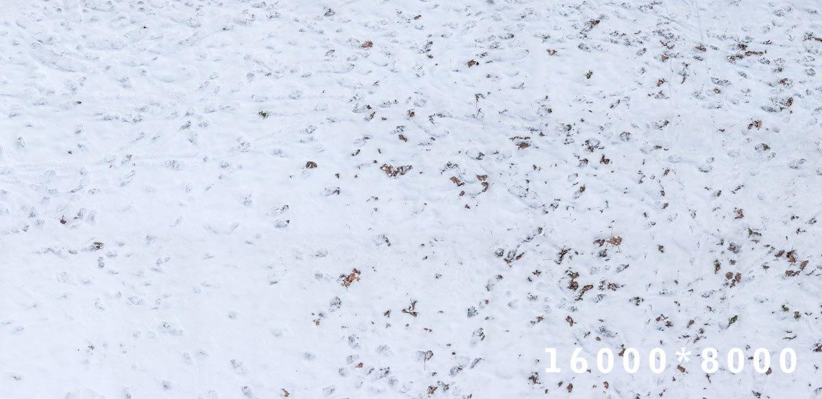 3d model ground snow