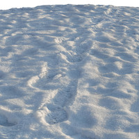 ground snow 3d obj