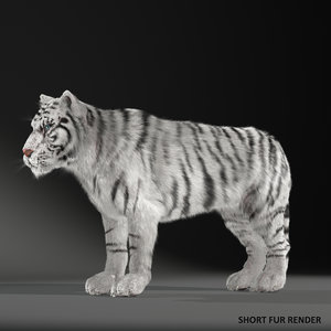 max realistical white siberian tiger