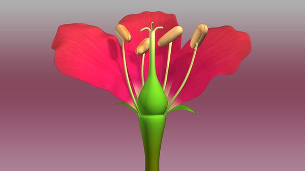 flower biological 3d obj