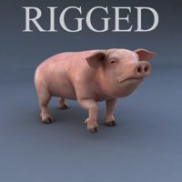 rigged pig animation 3d max