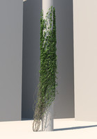 3d ivy wall column model