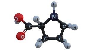 3d proline acid amino