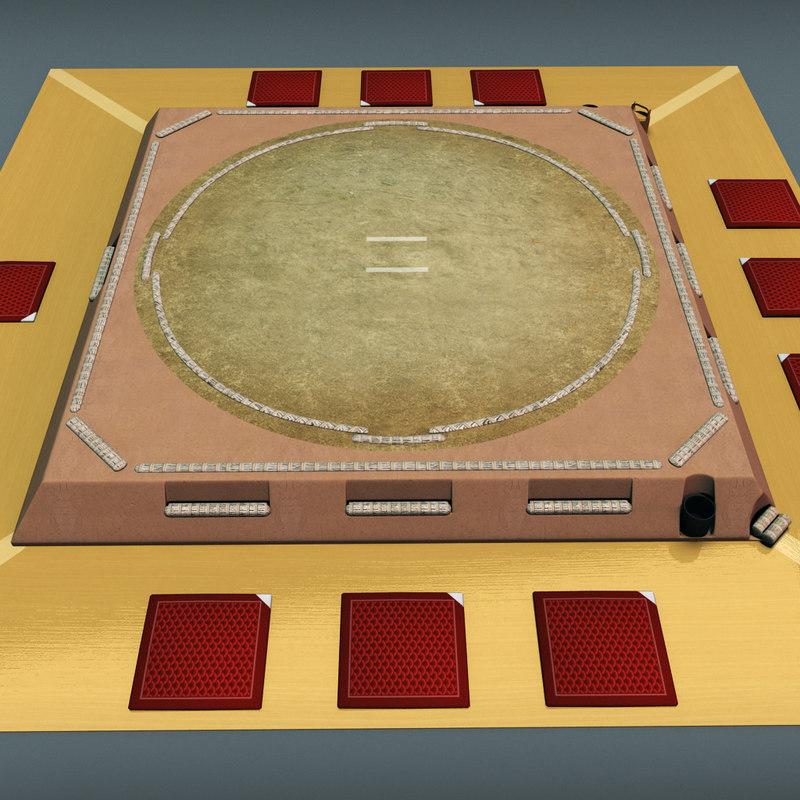3d sumo ring