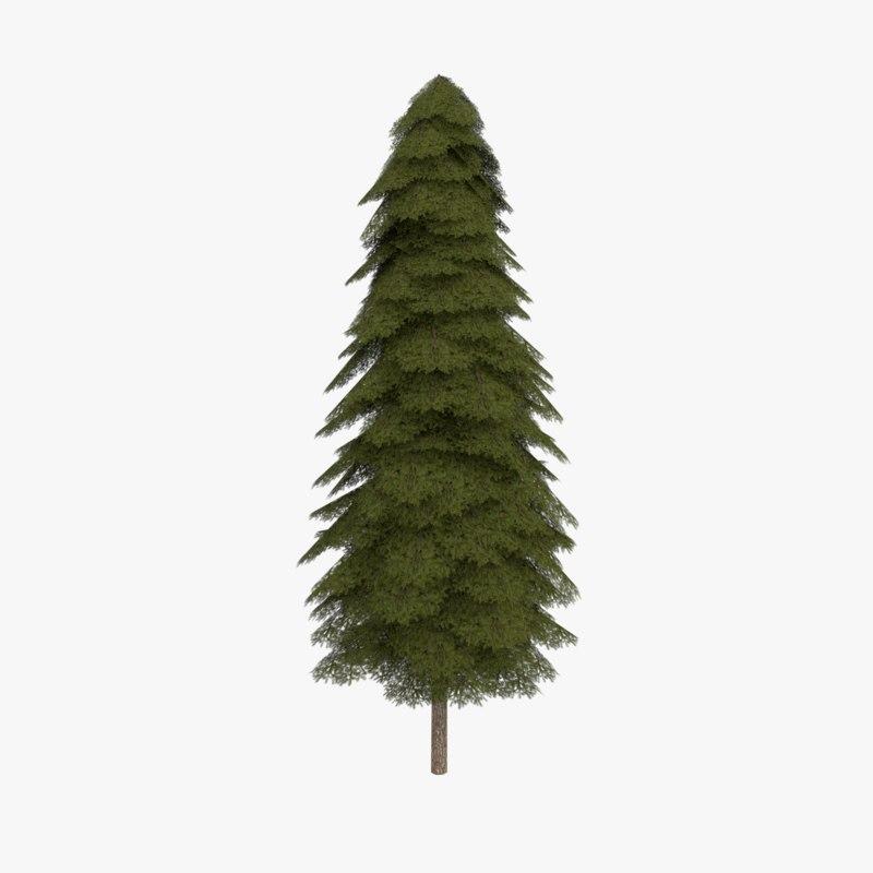 3d obj fir evergreen tree