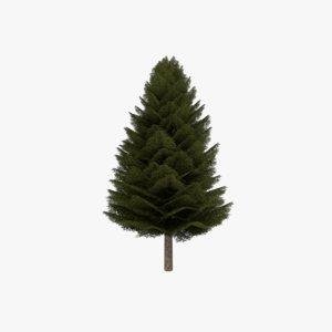 3d model fir evergreen tree