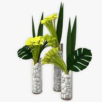 3d max callas flowers plant