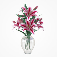 lily flowers plant 3d max