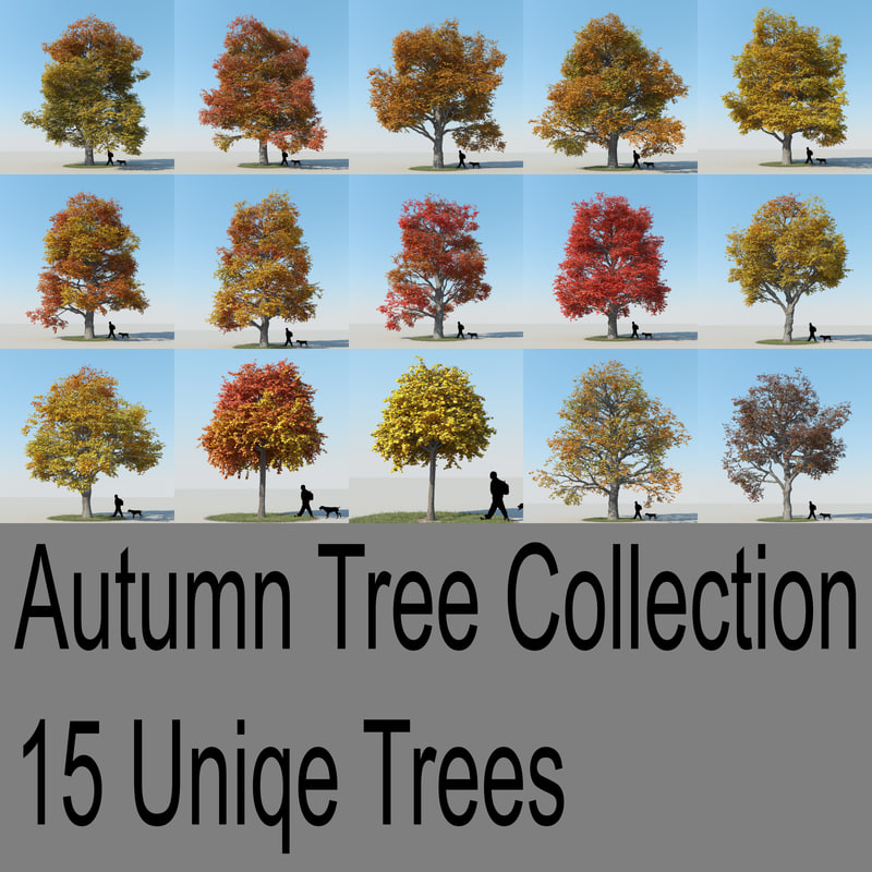 3d realistic maple trees autumn model