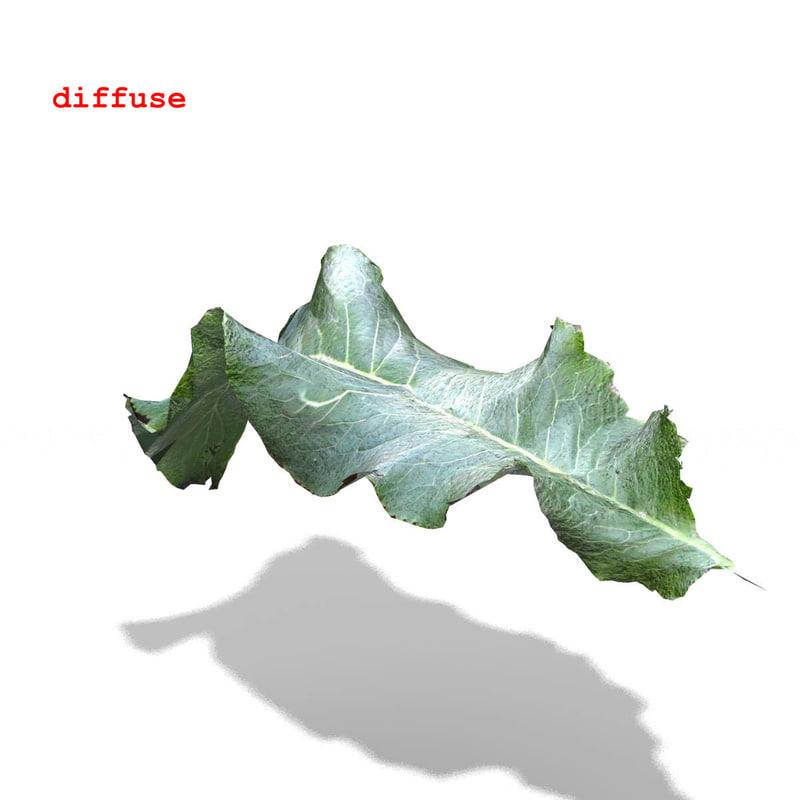 horseradish leaf 3d 3ds