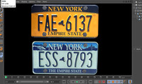 NY License plates