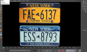 license plate 3d model
