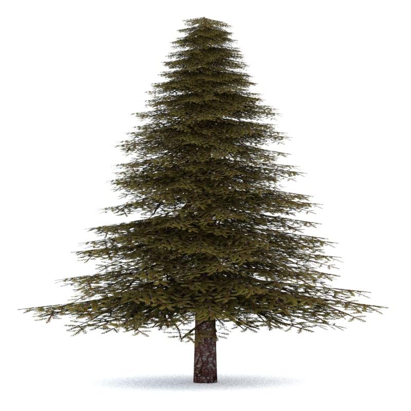 realistic fir tree 3 3ds