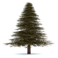 realistic fir tree 3 3ds