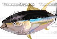 Tuna6