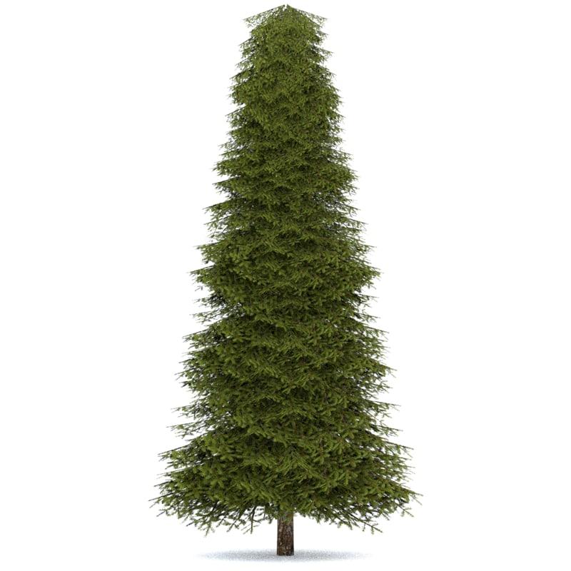 3ds max realistic fir tree 4