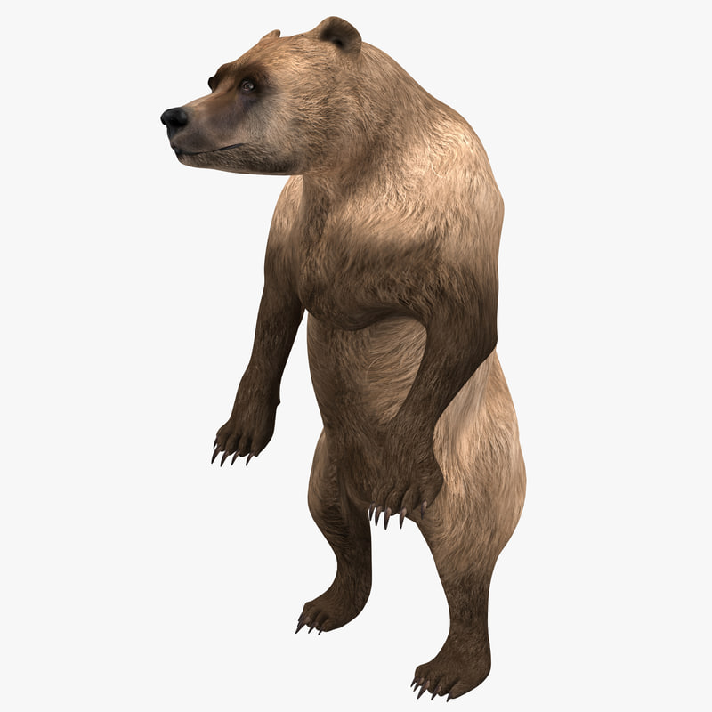 3ds max grizzly bear pose 3