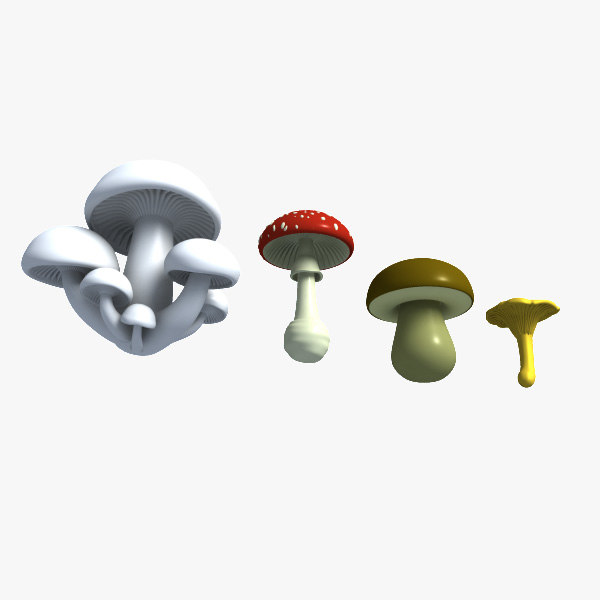 3d pack mushrooms