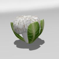 3d cauliflower flower
