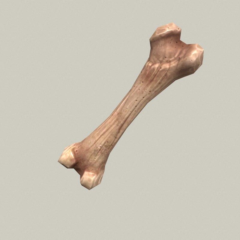low-poly cartoon bone 3d model
