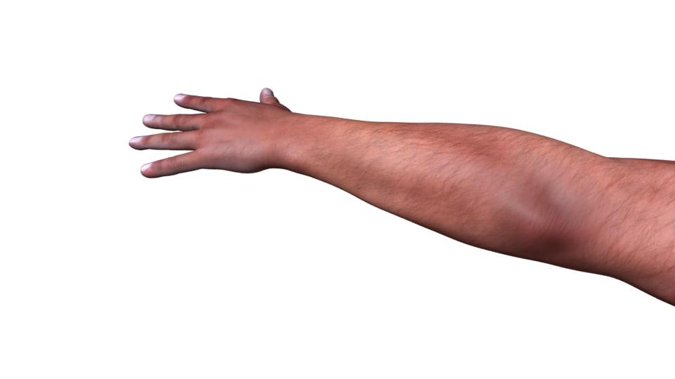 man hand 3d model