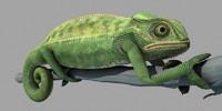3ds max chameleon