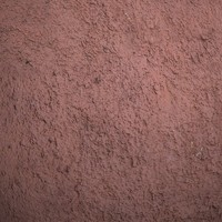 Plaster #06 Texture