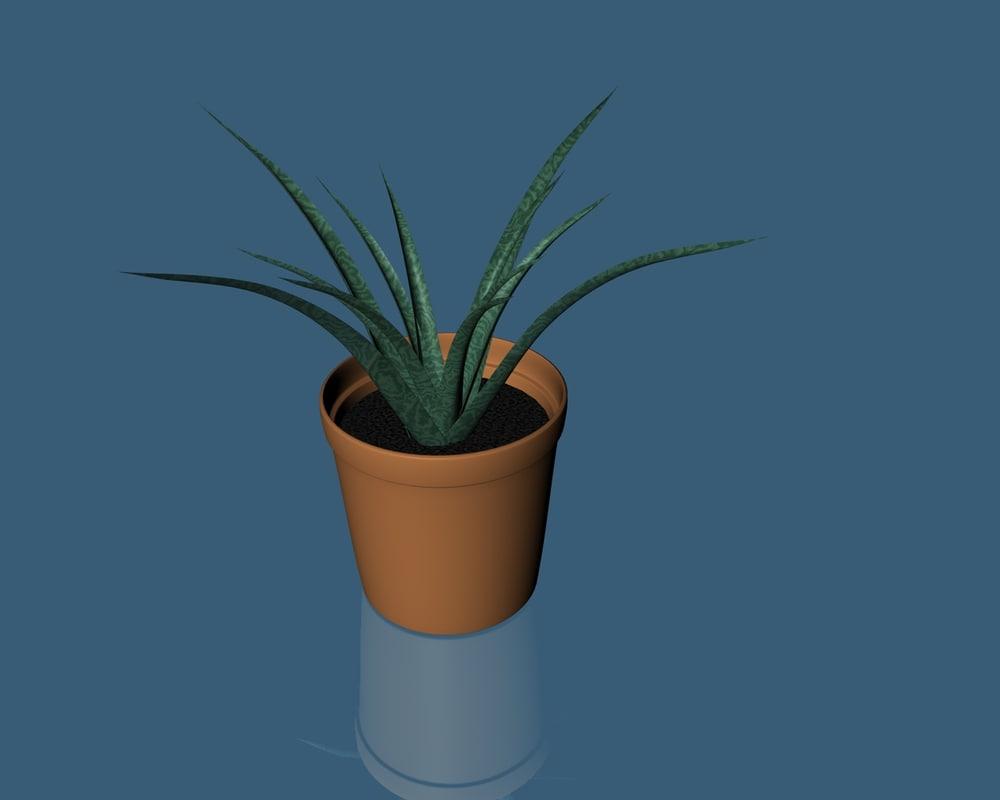 c4d plant pot