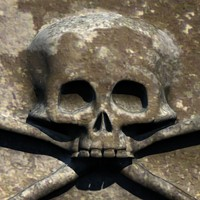 carved skull stone 3d 3ds