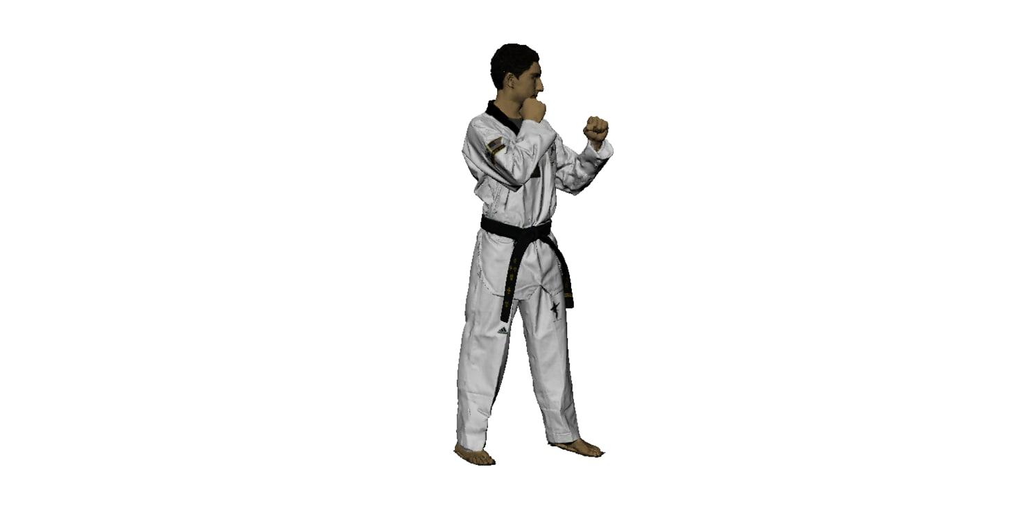 3d model taekwando karate
