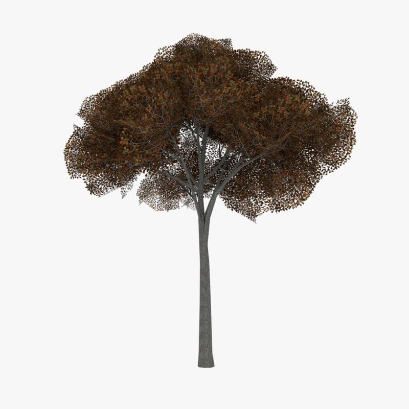 white oak tree 3d 3ds