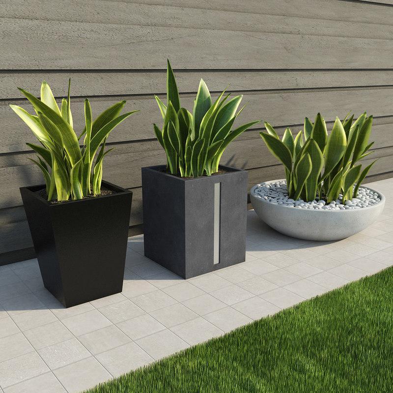3d max indoor outdoor plants