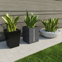 indoor outdoor plants 3d x