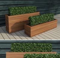 modern hedge 3d model
